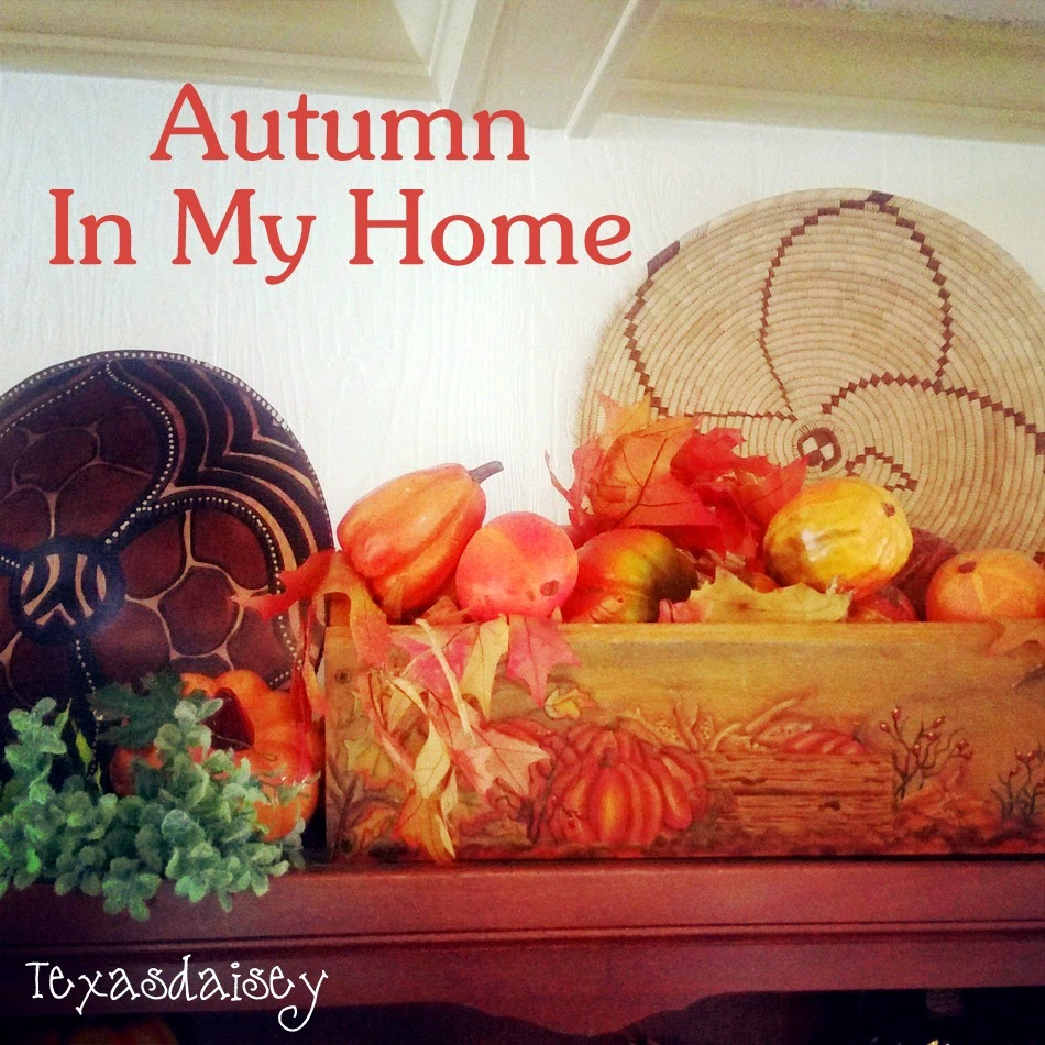 Autumn in my home 1: Texasdaisey