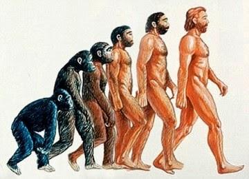 Ilustrasi Teori Evolusi Charles Darwin