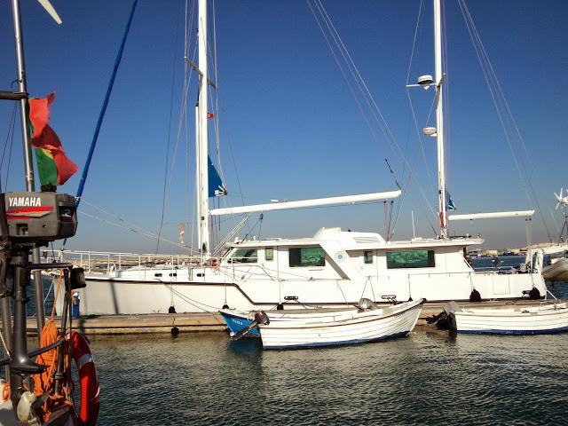 hybrid sailboat