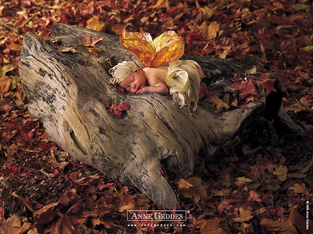 Bebé durmiendo sobre tronco.