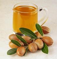 La planta del argán que crece en Marruecos y Argelia y es de sus frutos de los que obtenemos el aceite