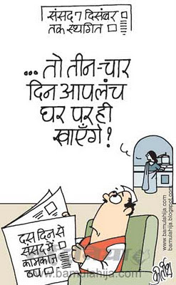 parliament, upa government, congress cartoon, indian political cartoon, FDI in Retail