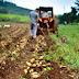 Τι νέο φέρνουν οι θεσμοί του Πολυλειτουργικού Αγροκτήματος και της Οικοτεχνίας