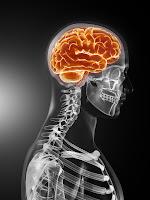 Neurology Physician Salary