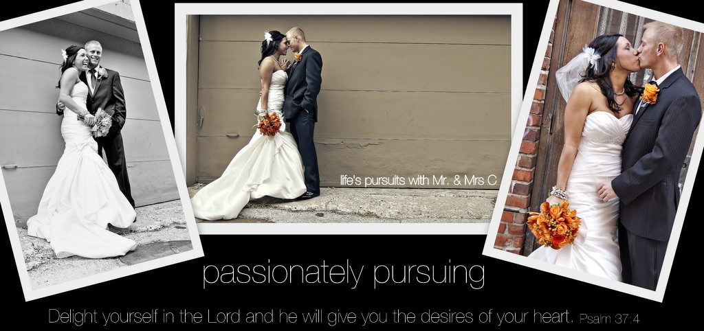 Passionately Pursuing...