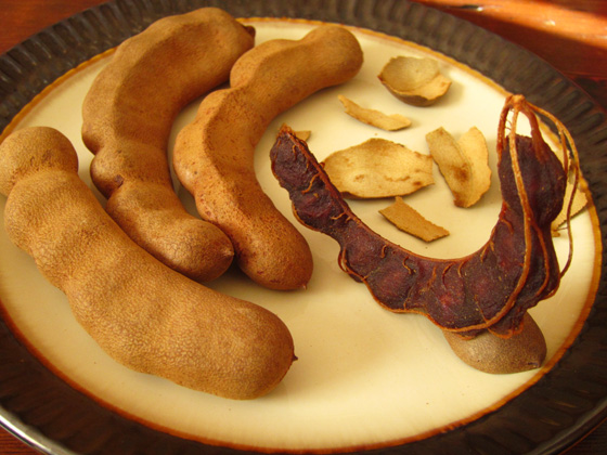 What Is Tamarind Good For?
