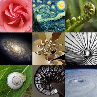 La Spirale  e il numero aureo di Fibonacci Esempi10
