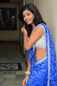 Bindhu latest sizzling saree pics-thumbnail-7