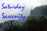 Saturday Sareenity