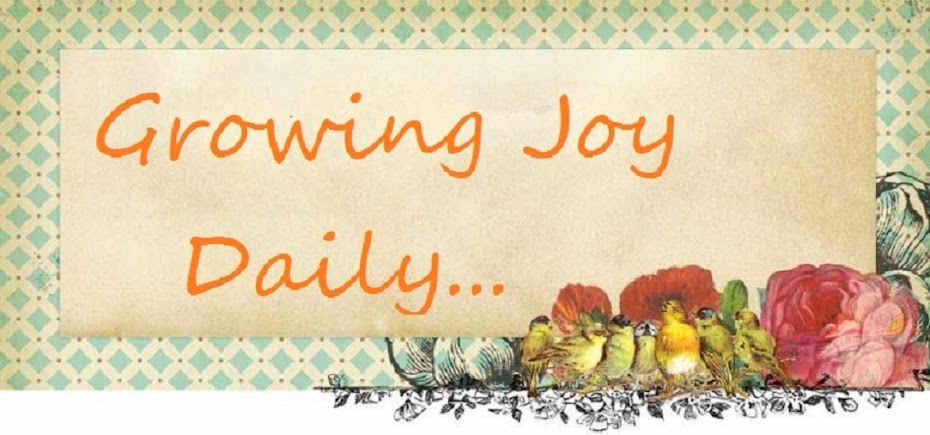Growing Joy Daily