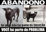 ABANDONO DE ANIMAIS