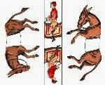 http://vicenteurquia.blogspot.com.es/2014/07/acertijo-7-puzzle-los-dos-caballos.html