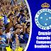 Papel de Parede: Cruzeiro campeão do Campeonato Brasileiro 2013!