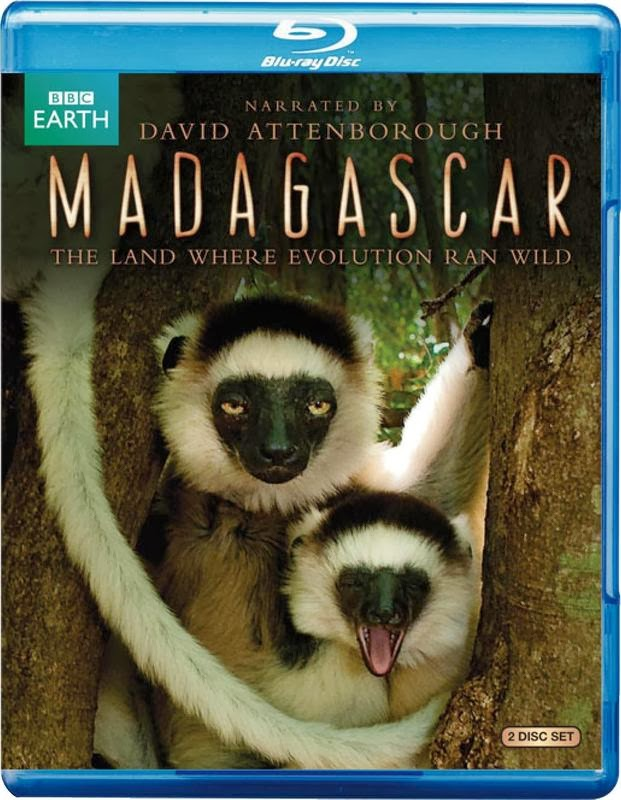BBC: Madagascar Episódio 03 MKV + RMVB Legendado