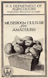 Mushroom Culture For Amateurs