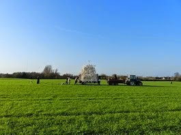 På marken, hvor korsmarken stod