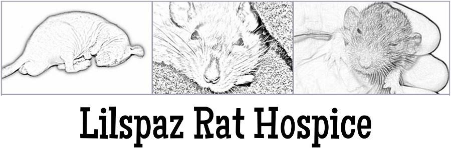 Lilspaz Rat Hospice