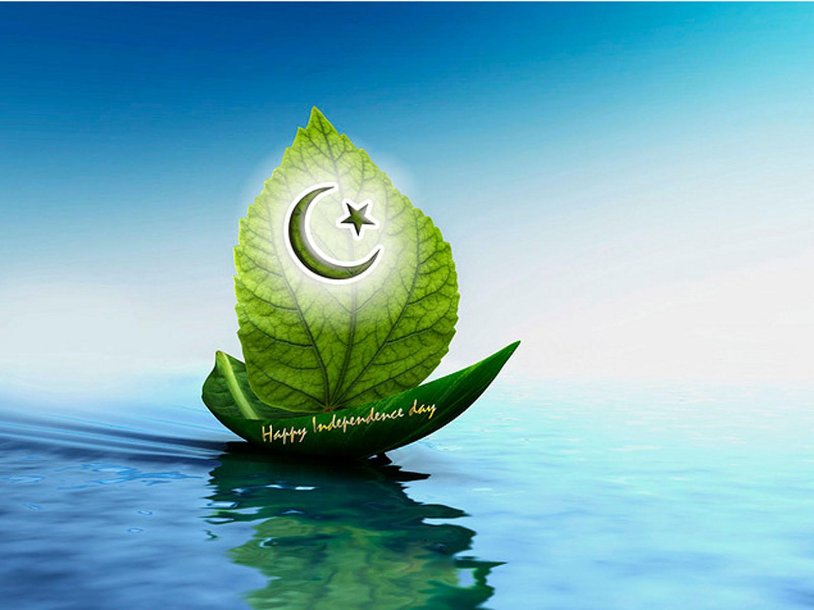 Pakistan Flag Beautiful Wallpapers 2013 Wallpapers