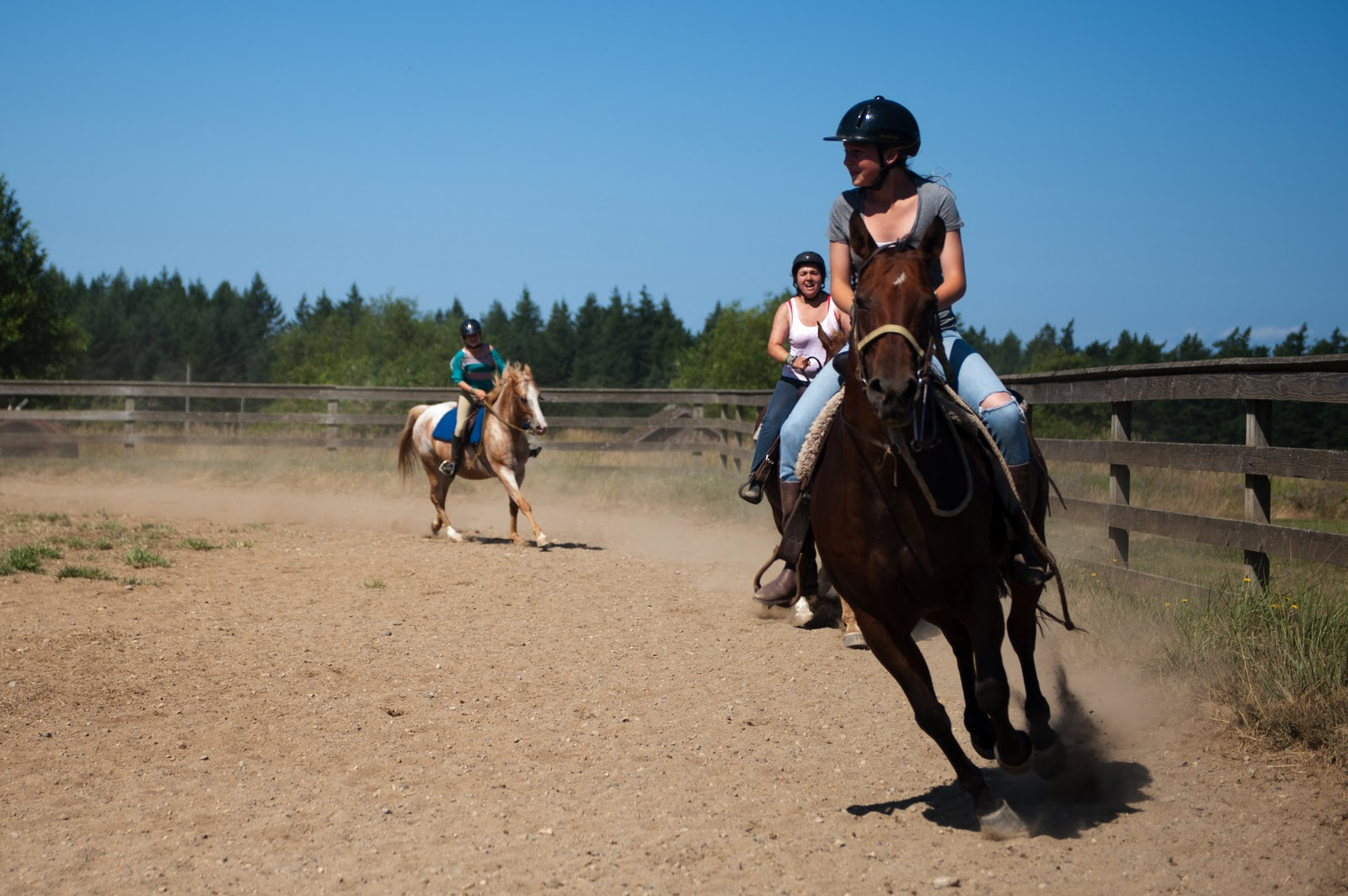 YMCA Camp Orkila: The Blog: Riding Lessons