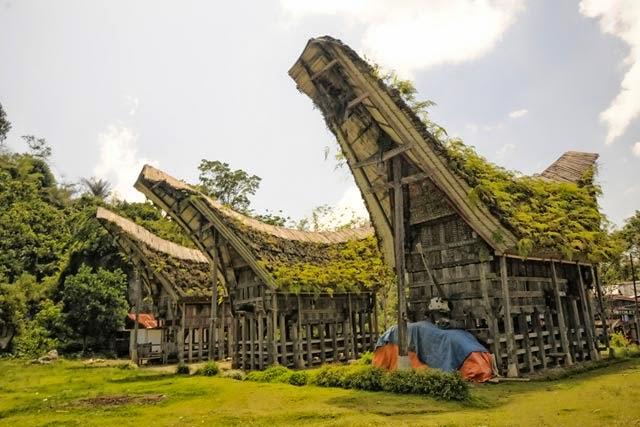 Rumah Adat Tongkonan