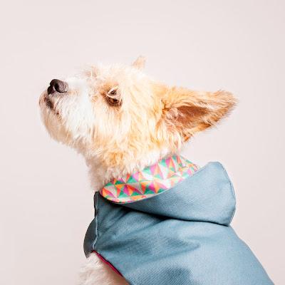 Impermeable para perro modelo Berenjena/Diamante