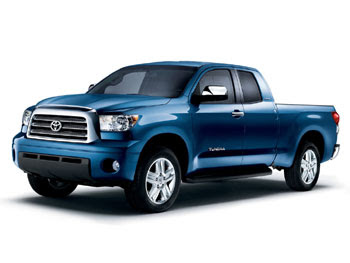 CATS AND DOGS: Toyota Truck