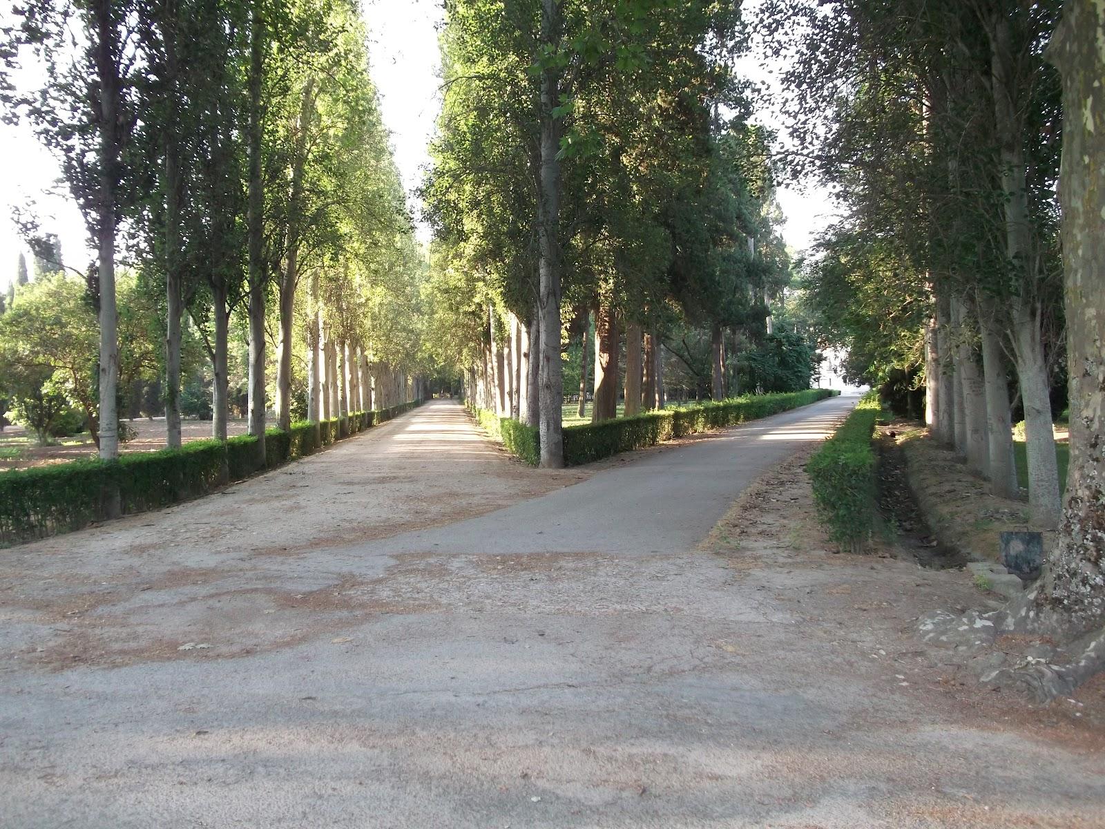 Senderitos de aranjuez ruta por el jardin del principe for El jardin del principe