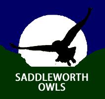 Saddleworth Owls