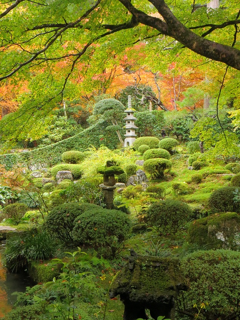 Gardens of Sanzen-in Temple in Ohara
