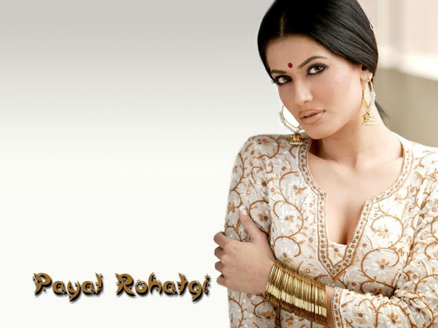 Beautiful Payal Rohatgi HD Wallpaper