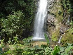 Zona Protectora Río Tiribí