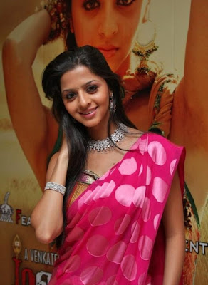 Vedika Hot in Rose Saree Photos