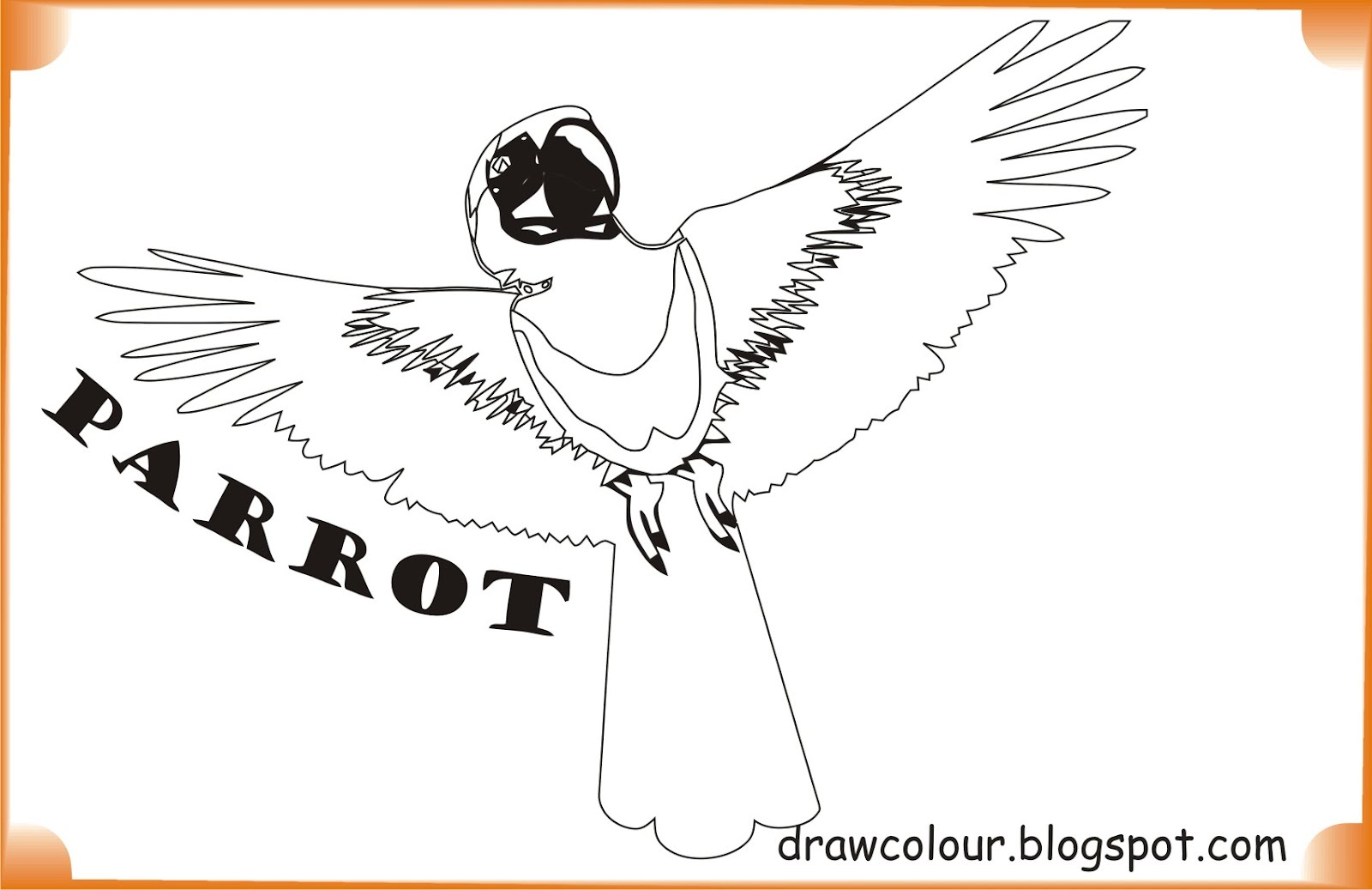 printable-parrot-coloring-pages