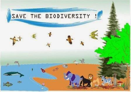 Pengertian Keanekaragaman Hayati atau Biodiversitas
