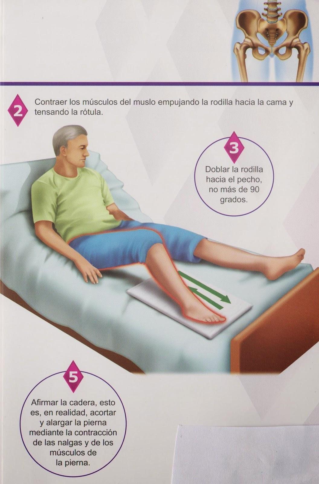 reemplazo de cadera cuidados fisioterapia