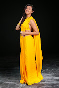Neelam Upadhyay photos in Yellow saree from Action-thumbnail-16