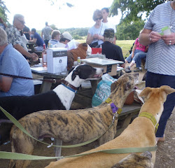 WALK AND BARBECUE - SUNDAY 4th SEPTEMBER 3PM AT THE KENNELS