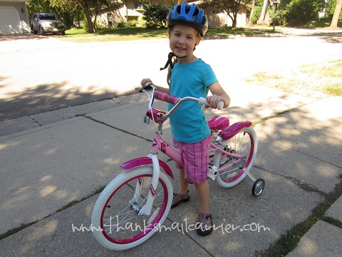 Performance Bicycle review