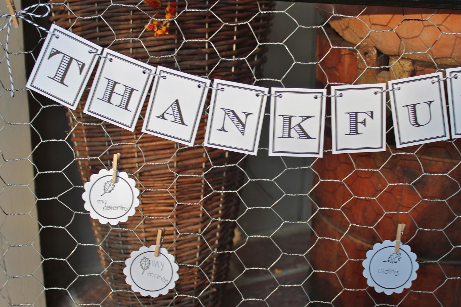 Thankful Chicken Wire Frame - Bloom Designs