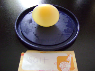osmosis experiment with eggs conclusion