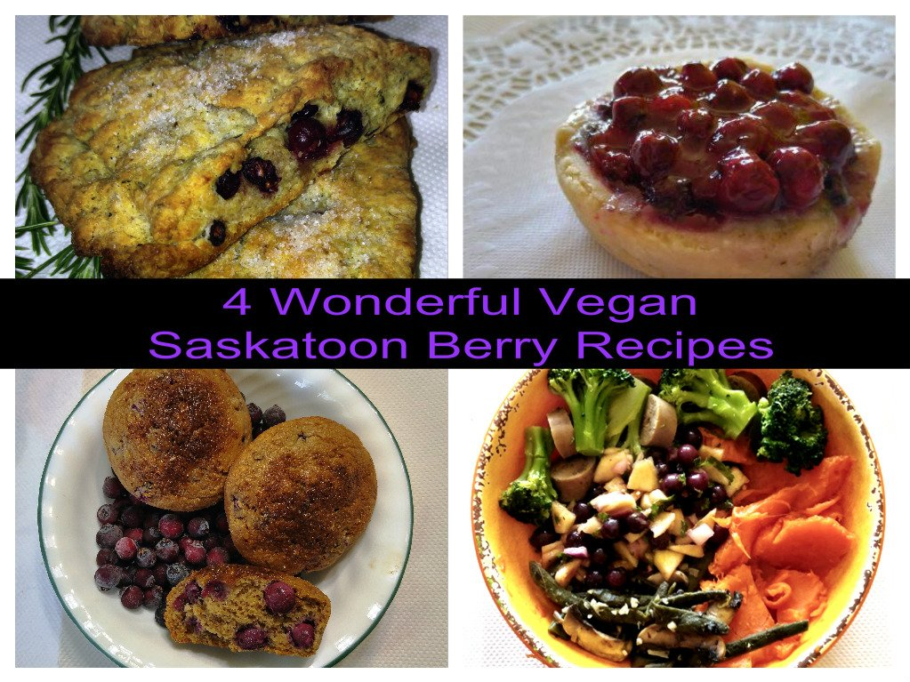 The Saskatoon Berry- A True SuperFood