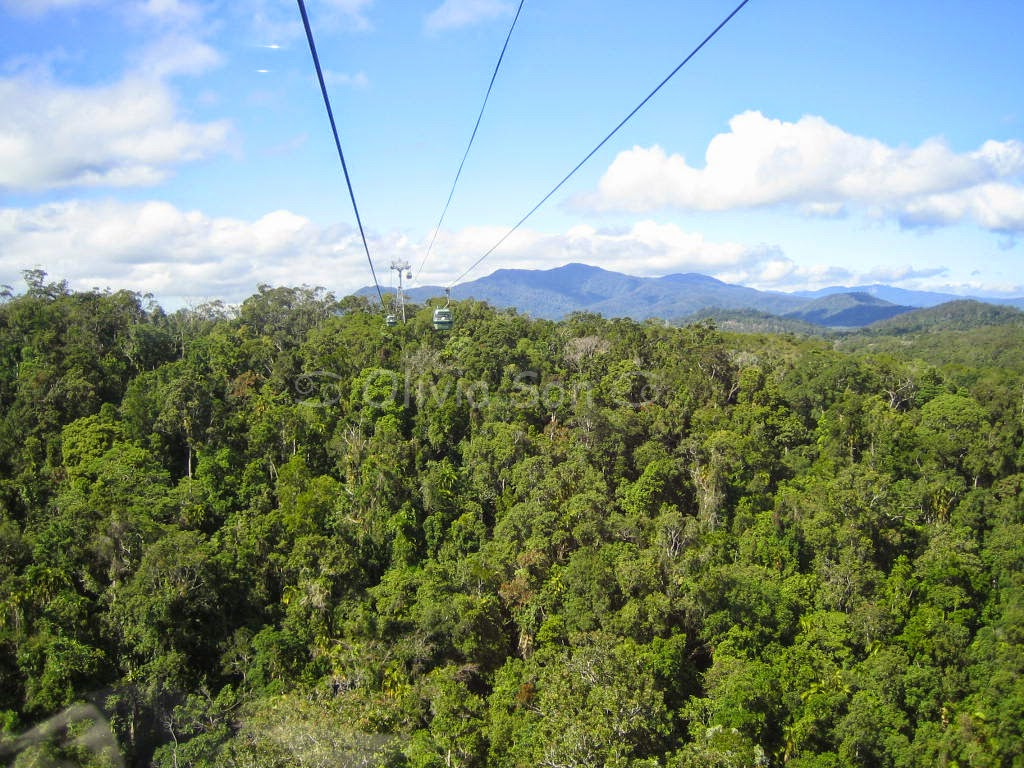 Kuranda Skyrail, Cairns Tablelands, Queensland, Australie