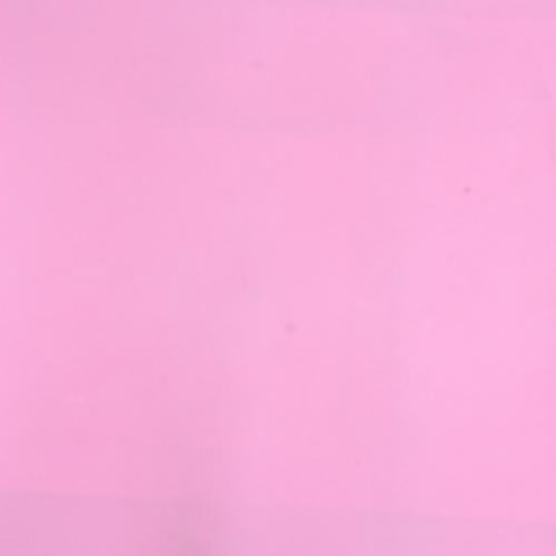 rumah cat pink holidays oo