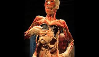 Organ Tubuh Yang Akan Hancur Setiap Kali Kamu Begadang! DARI SEKARANG AYO KURANGI !
