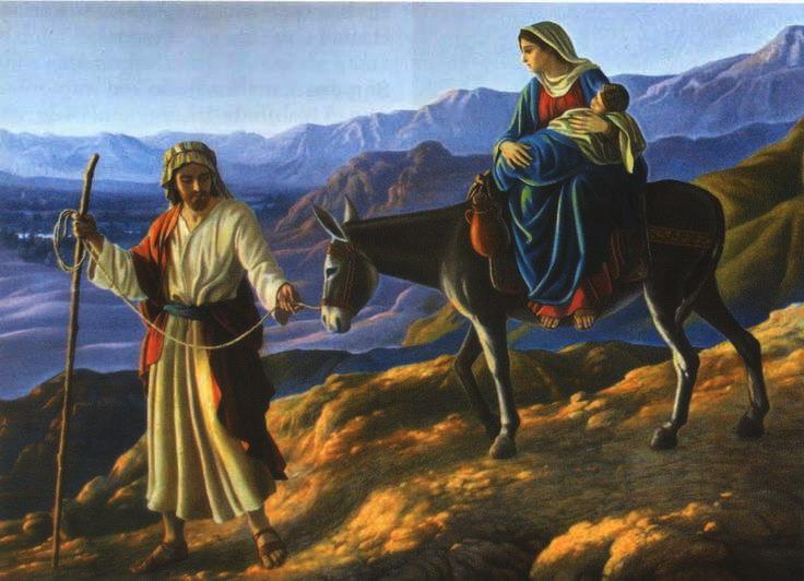 OLIO DI SAN GIUSEPPE