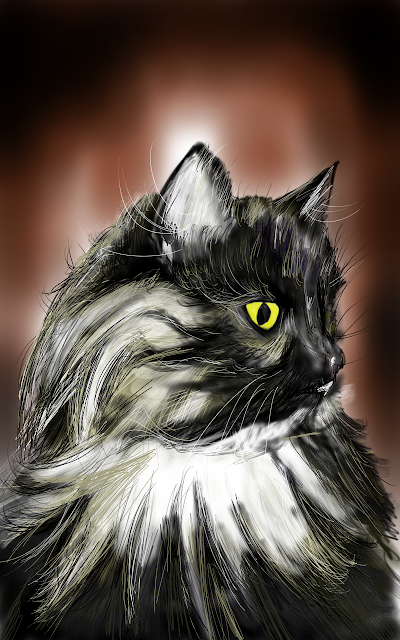 draw cat galaxy note 10.1 samsung dessin lace