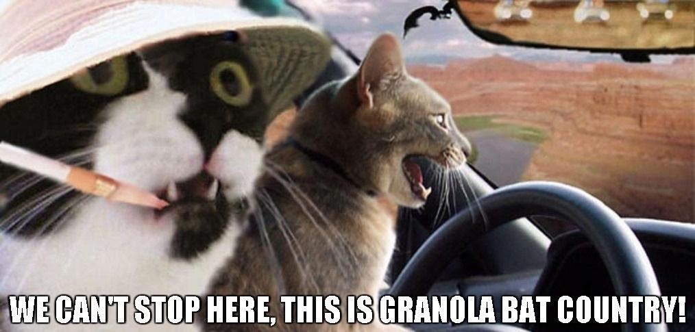 Granola Bat