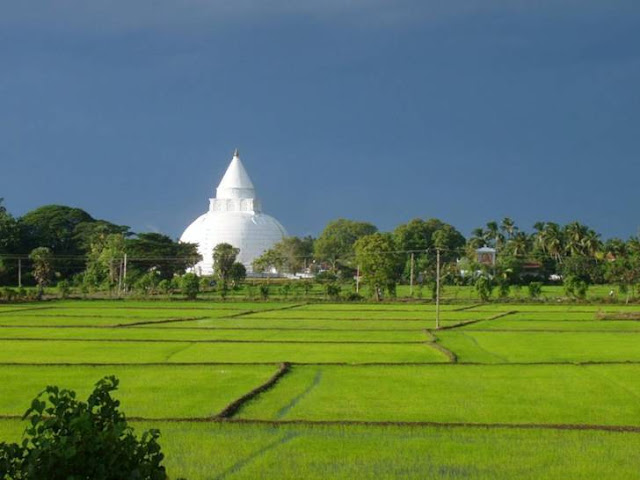 Beautiful Places from Sri Lanka