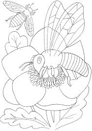 Mewarnai gambar bunga dan kupu-kupu untuk anak 17