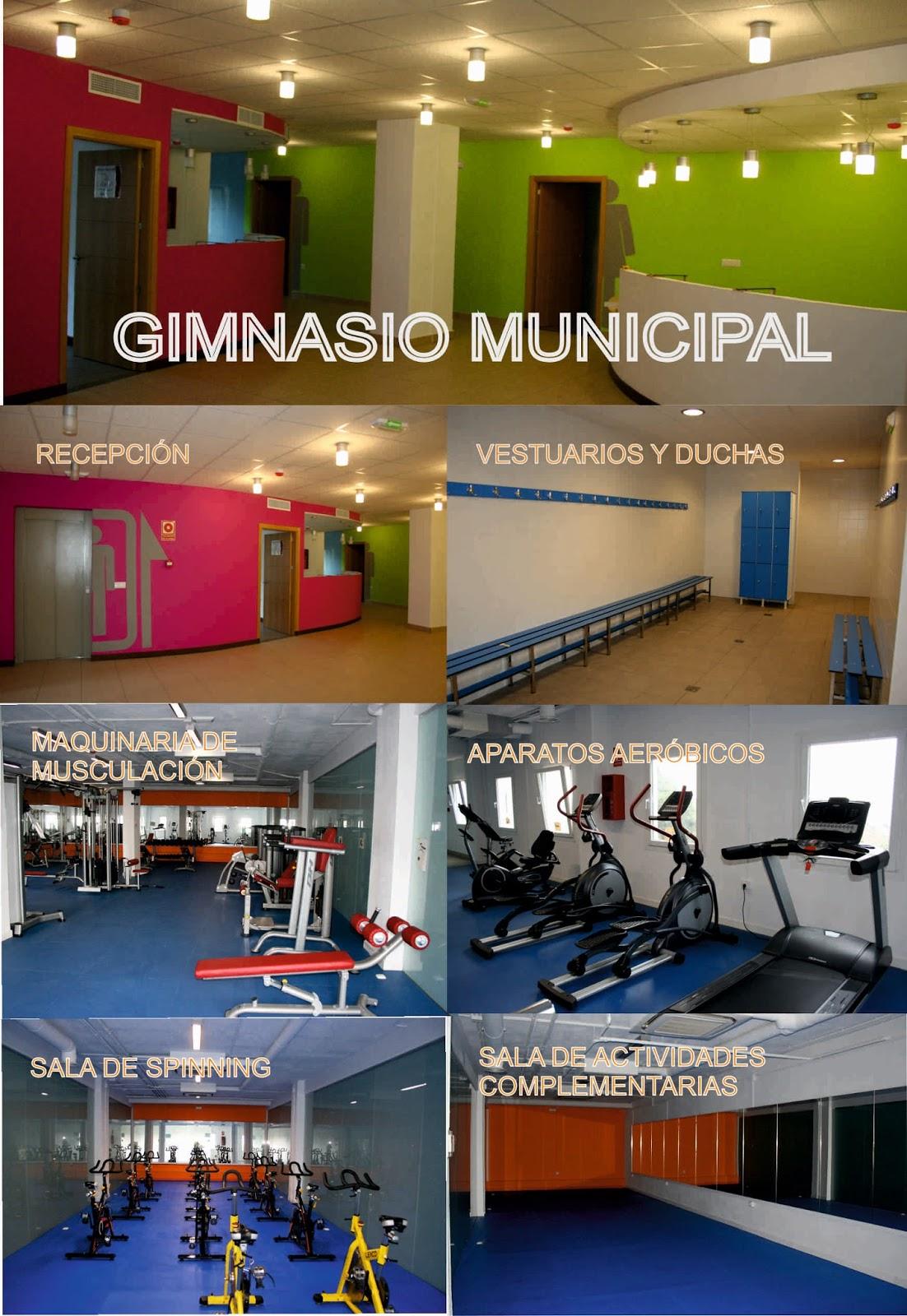 Casares informacion septiembre 2015 for Monitor gimnasio